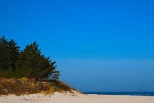 Rezerwat na Bałtyku