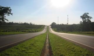 zielona autostrada