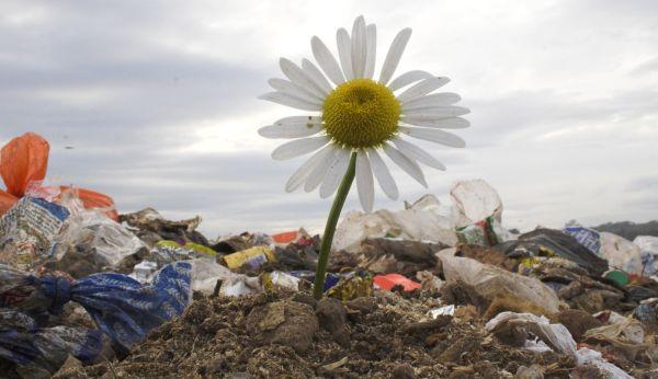 gospodarka odpadami - odpady komunalne
