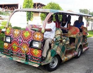 palmowy samochod samochod ekologiczny ochrona srodowiska 300x237 Palmowy samochód z Filipin