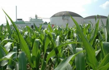 Biogazownia rolnicza (Fot. Gramwzielone.pl)