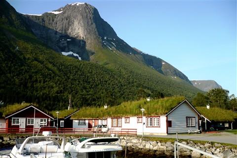 """""""Zielone dachy"""" w Norwegii / Fot. WirtualneOslo.pl"""