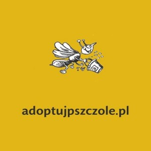 Fot. adoptujpszczole.pl