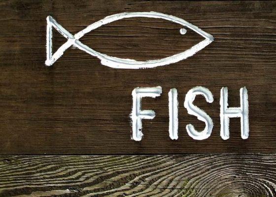 dzień ryby - jaka ryba na obiad?
