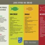 ryby - jaka ryba na obiad