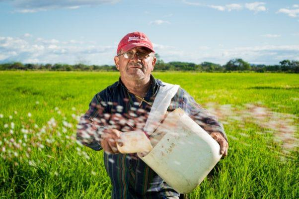konkurs rolnik roku