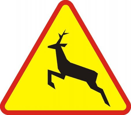 znak uwaga dzikie zwierzęta