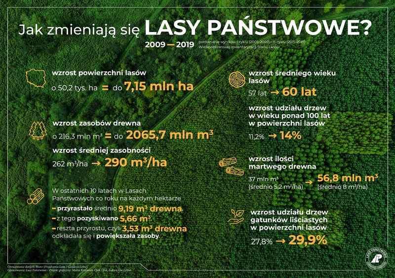 infografika - jak zmieniają się lasy Państwowe
