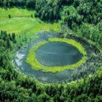 Okrągłe jezioro w lesie