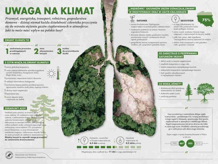 infografika - uwaga na klimat
